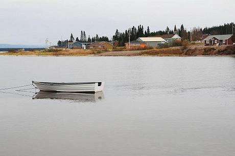 Labrador.Oct2012 012 - Copy